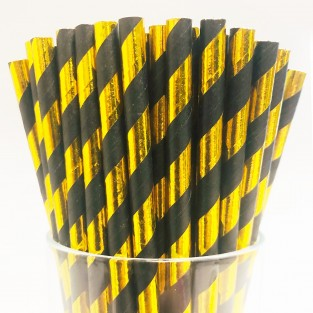 Black & Gold Biodegradable Paper Straws (25 pack)
