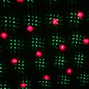 Premier Outdoor Laser Light With Timer 2