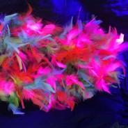 UV/Neon Feather Boa 5 Neon Feather Boa