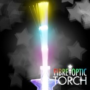 Fibre Optic Torch 3